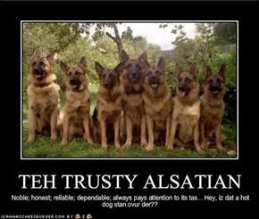 TEH TRUSTY ALSATIAN