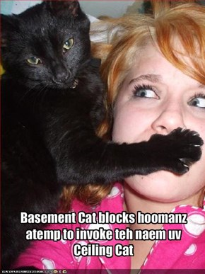 Basement Cat blocks hoomanz atemp to invoke teh naem uv Ceiling Cat