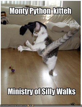 Monty Python  kitteh