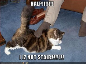 HALP!!!!!!!  I IZ NOT STAIRZ!!!1!!