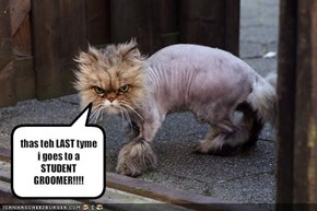 thas teh LAST tyme i goes to a STUDENT GROOMER!!!!