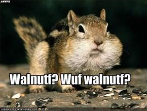 Walnutf? Wuf walnutf?