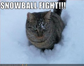 SNOWBALL FIGHT!!!