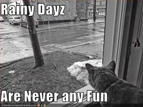 Rainy Dayz  Are Never any Fun