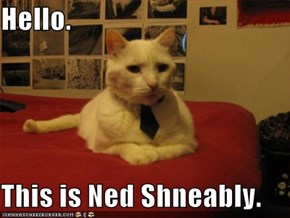 Hello.  This is Ned Shneably.