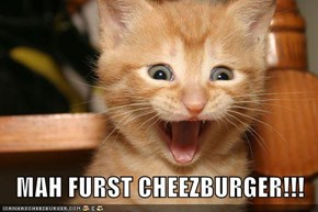MAH FURST CHEEZBURGER!!!