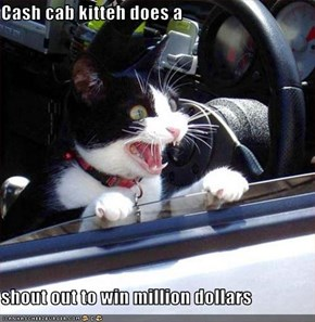 Cash cab kitteh does a  shout out to win million dollars