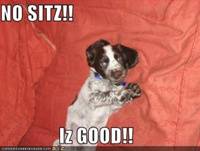 NO SITZ!!  Iz GOOD!!