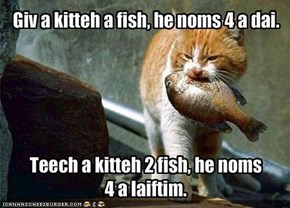 Giv a kitteh a fish, he noms 4 a dai.