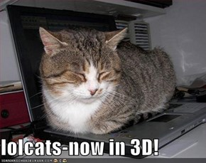 lolcats-now in 3D!