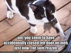 um, you seem tu have