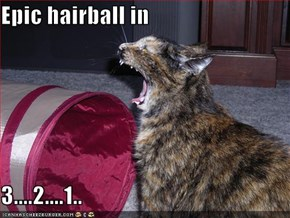 Epic hairball in  3....2....1..