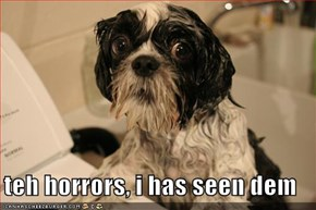teh horrors, i has seen dem