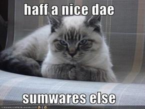 haff a nice dae  sumwares else