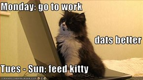 Monday: go to work                                                 dats better Tues - Sun: feed kitty