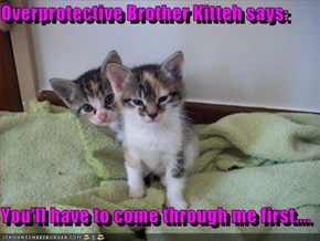 Overprotective Brother Kitteh says:  You'll have to come through me first....