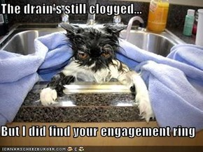 The drain's still clogged...  But I did find your engagement ring
