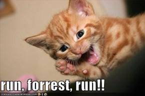 run, forrest, run!!