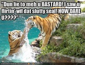 """Dun lie to meh u BASTARD! I saw u flirtin' wif dat slutty seal! HOW DARE U????"""