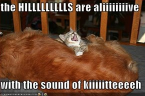 the HILLLLLLLLLS are aliiiiiiiive  with the sound of kiiiiitteeeeh