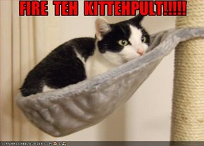 FIRE  TEH  KITTEHPULT!!!!!