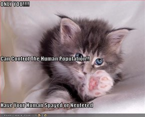 ONLY YOU!!!! Can Control The Human Population!! Have Your Human Spayed or Neutered