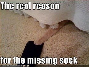 The real reason  for the missing sock
