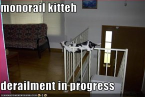monorail kitteh   derailment in progress