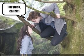 I'm stuck, call 911