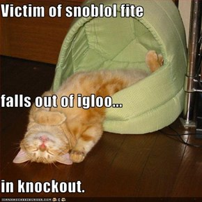 Victim of snoblol fite  falls out of igloo... in knockout.