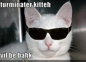 turminater kitteh  vil be bahk