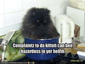 Complaintz to da kitteh can bee hazarduss to yer helfth