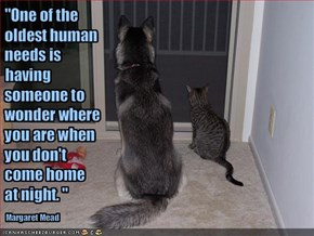 """One of the oldest human needs is having someone to wonder where you are when you don't come home at night. """