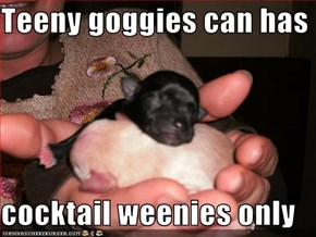 Teeny goggies can has  cocktail weenies only