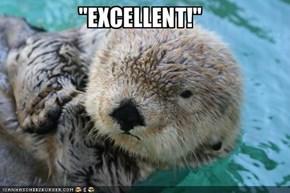 """""""EXCELLENT!"""""""