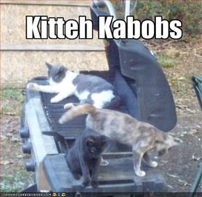 Kitteh Kabobs