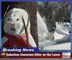 Breaking News - Suburban Snowman Killer on the Loose