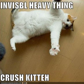 INVISBL HEAVY THING   CRUSH KITTEH