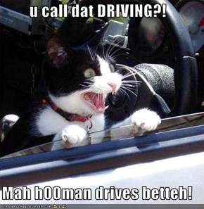 u call dat DRIVING?!  Mah h00man drives betteh!