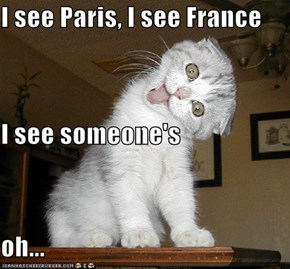 I see Paris, I see France I see someone's oh...