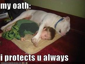 my oath:  i protects u always