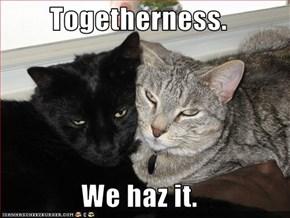 Togetherness.  We haz it.