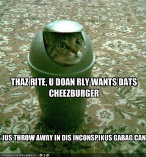 THAZ RITE, U DOAN RLY WANTS DATS CHEEZBURGER