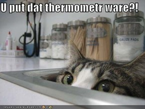 U put dat thermometr ware?!