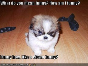 What do you mean funny? How am I funny?   Funny how, like a clown funny?