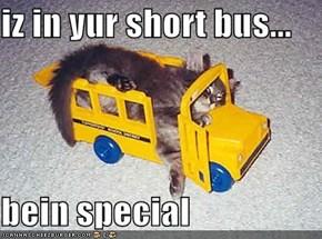 iz in yur short bus...  bein special