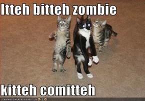 Itteh bitteh zombie   kitteh comitteh