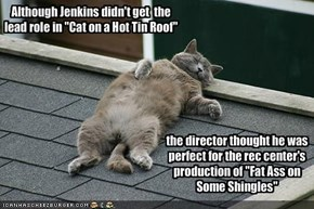"Although Jenkins didn't get  the lead role in ""Cat on a Hot Tin Roof"""