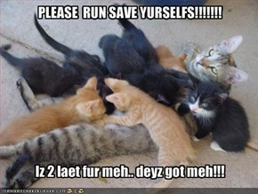 PLEASE  RUN SAVE YURSELFS!!!!!!!  