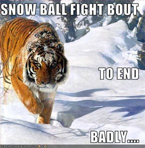 SNOW BALL FIGHT BOUT  TO END BADLY....